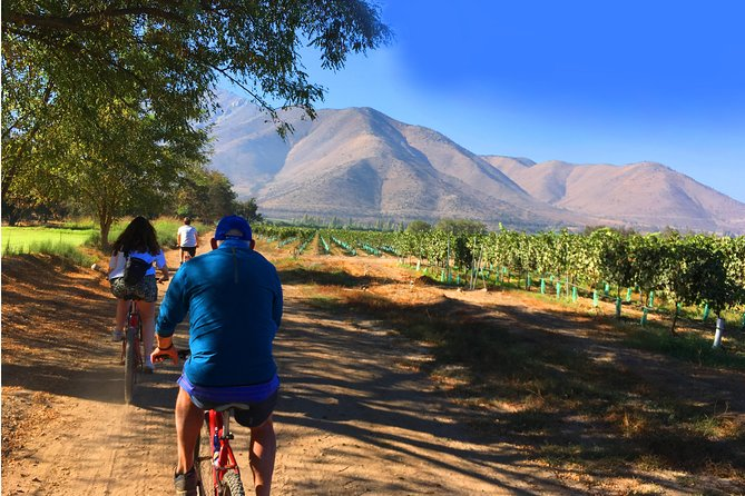 EXCLUSIVE!! Maipo Valley and Santa Rita Wine Tour by Bicycle with Tastings