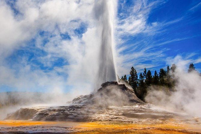 Take a Private Day Tour of Yellowstone National Park