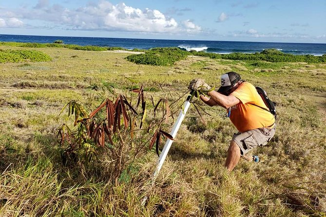 Ka'iwi Scenic Shoreline Restoration Days photo 8