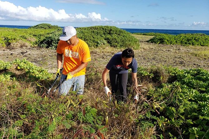 Ka'iwi Scenic Shoreline Restoration Days