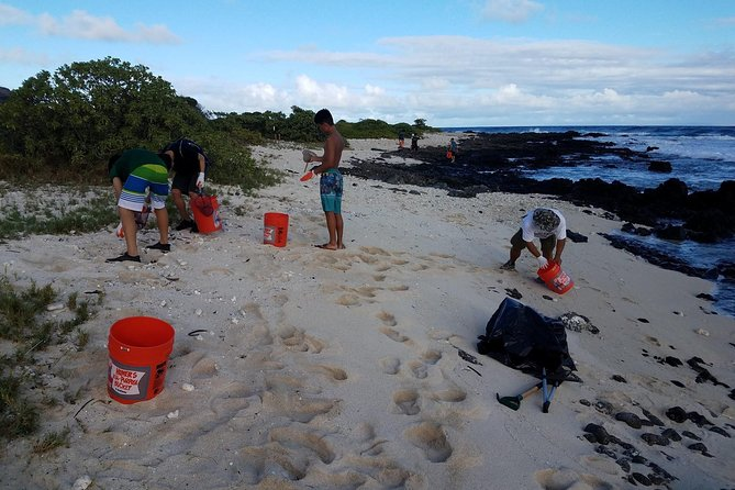 Ka'iwi Scenic Shoreline Restoration Days photo 4