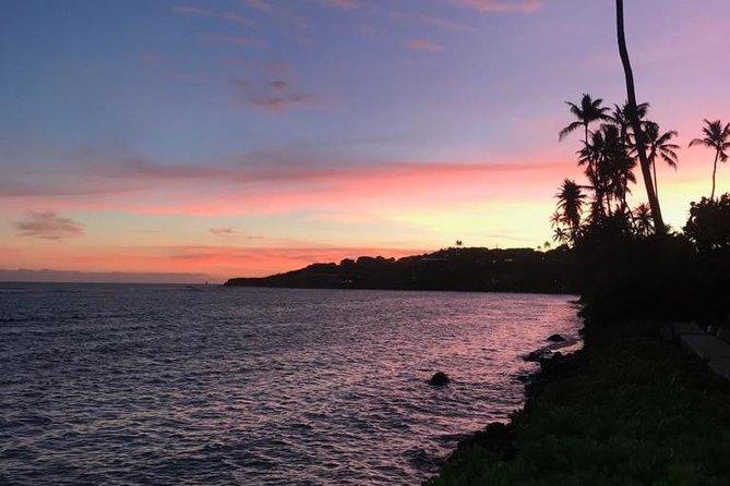 South Shore Aloha Friendly Tour