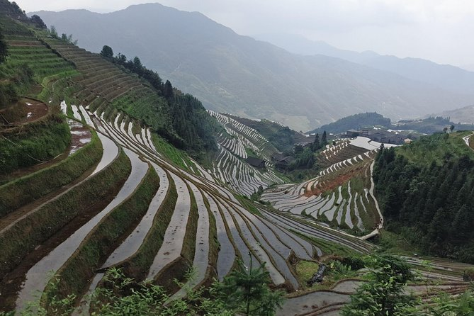 Longji Rice Terraces Day Tour from Xingping hotel photo 1
