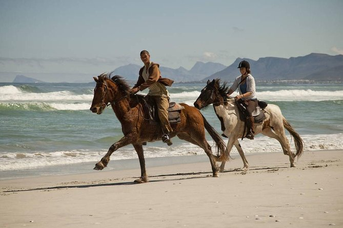 Beach Ride - De Kelders I Gansbaai photo 1