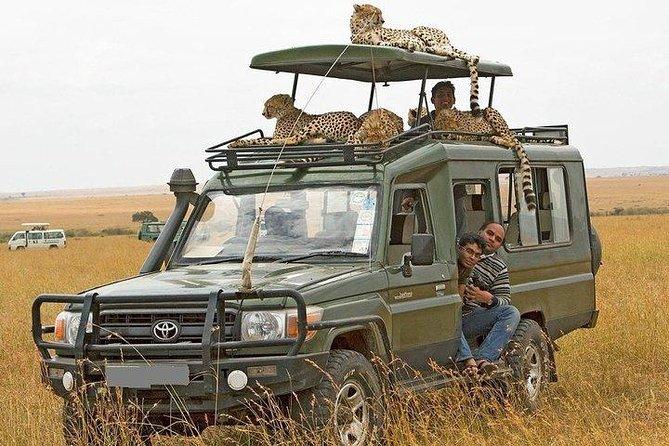 10-Days Explore Kenya Wildlife Private Safari
