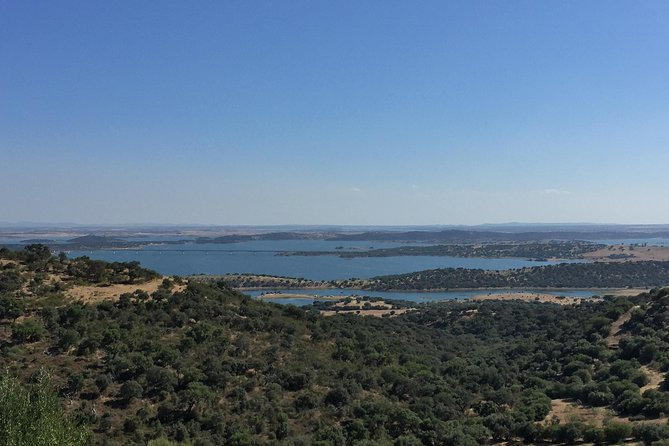 Evora and Monsaraz Full-Day Private Tour from Lisbon photo 10