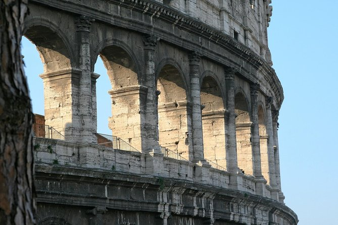 ROME Colosseum: 1-Hour guided experience with Roman Forum & Palatine hill access photo 8