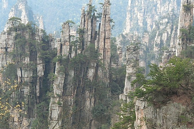 1- Day Zhangjiajie National Forest Park(Avatar) & Tianmen Mountain Private Tour photo 4