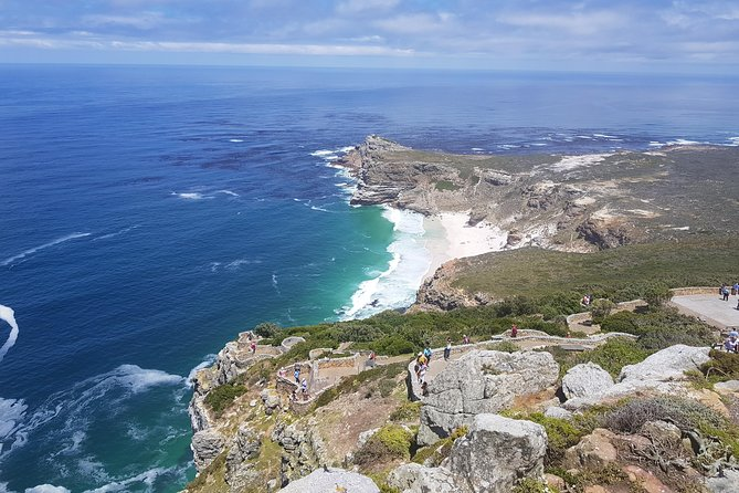 PREMIUM Cape Point and Penguin Viewing Tour photo 6