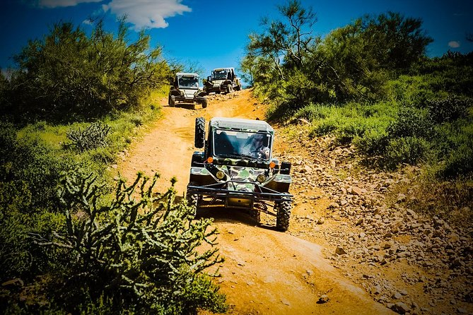 3 Hour Guided TomCar ATV Tour through the AMAZING Sonoran Desert!