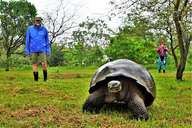 10-Day Galapagos and Amazon Quest