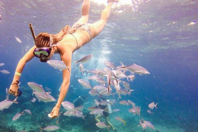 Catalina Island & Snorkeling Paradise From Punta Cana