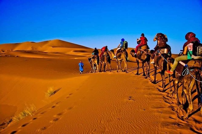 3 Days 2 Nights Private Tour from Marrakech to Fes via Sahara Desert
