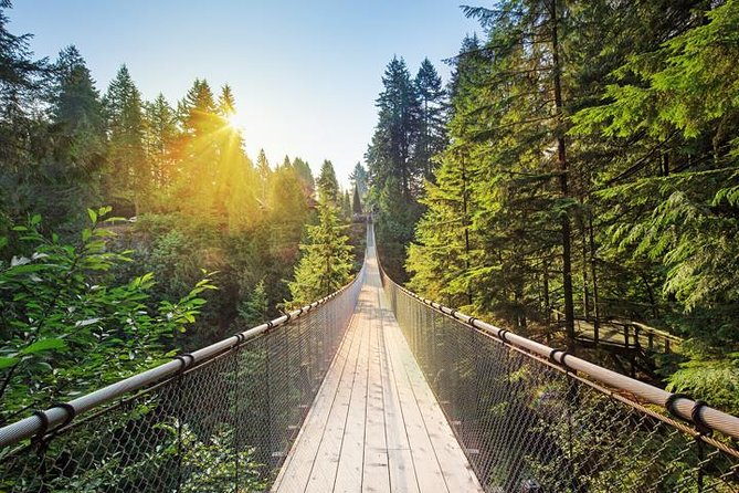 Seaplane Tour with Admission to Capilano Suspension Bridge Park
