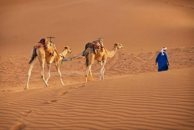 2 Days 1 night to Zagora from Marrakech