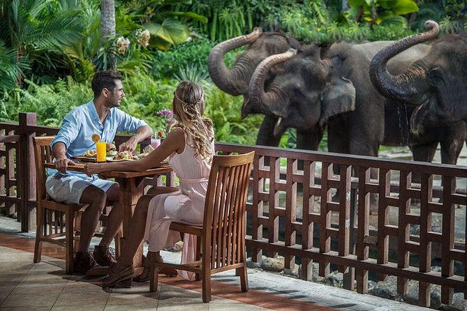 Care Experience for The Elephant and Breakfast in Ubud