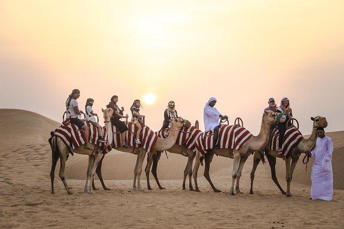Dubai Sunrise Camel Trek with Morning Breakfast at Bedouin Camp