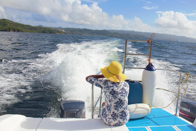 Samana Tours (With Whales) Full Day Excursion! All inclusive Tour!