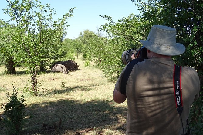 Half Day Nature Walk & Safari Experience including Rhino encounter