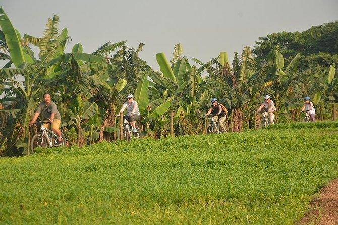 Bicycle Tours Hanoi Sun Rise