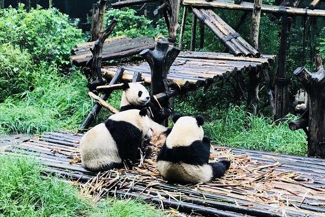 Visite privée tout compris: 2 jours de découverte de Chengdu avec hébergement à l'hôtel