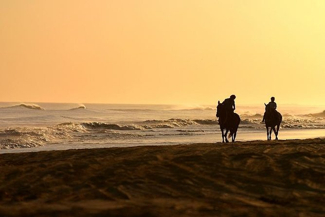 Private Sunset Horseback Riding Tour Punta Cana