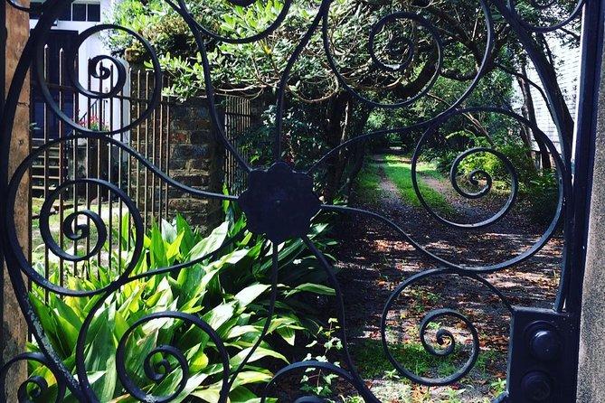 High Society II: Combo Walking Tour with Art & Wine