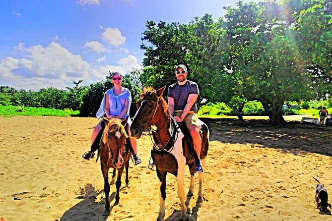 The Authentic Fijian Natadola Beach Horse Riding Adventure