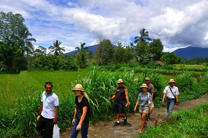 Trekking Through Beautiful Balinese Village photo 2