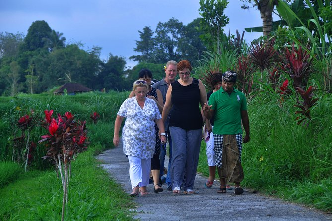Trekking Through Beautiful Balinese Village photo 4