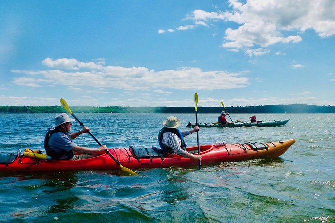 Half-Day Orleans Island Small-Group Sea Kayaking Tour