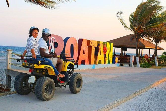 Roatan ATV Sightseeing, Sloth & Monkeys, Chocolate & Rum Factory