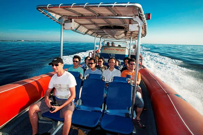 Bali Dolphin Sightseeing Tours