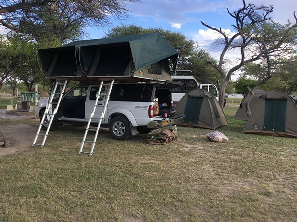 3 Day Camping tour at Etosha National Park
