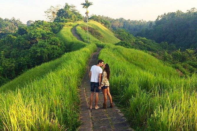 The Highlight of Ubud Country Side Full Day Tour
