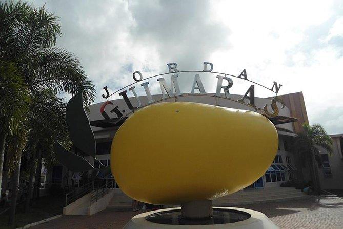 Guimaras Day Tour From Iloilo