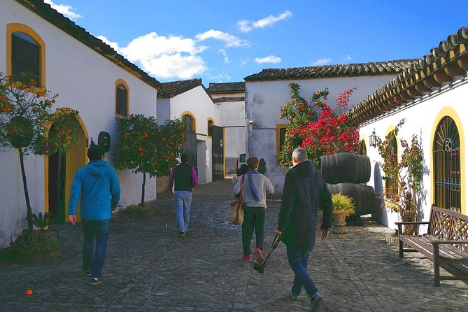 Discover Sherry in Jerez