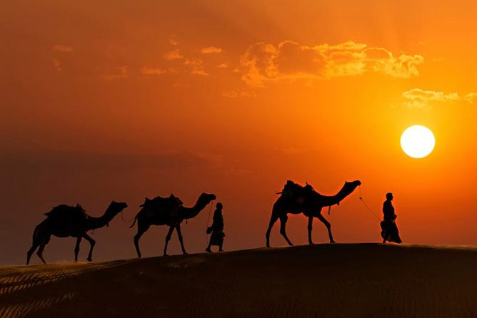Evening Desert Safari From Dubai: Dune Bashing, Camel Rides and Tanoura photo 10