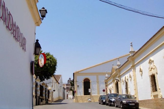 Discover Sherry in Jerez photo 2