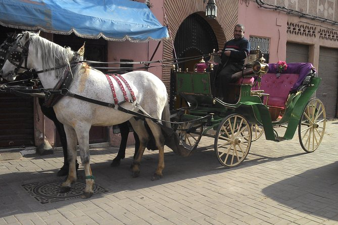 Horse-drawn carriage tour in Marrakech