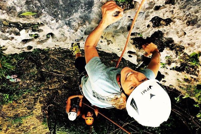 Rainforest Sport Climbing