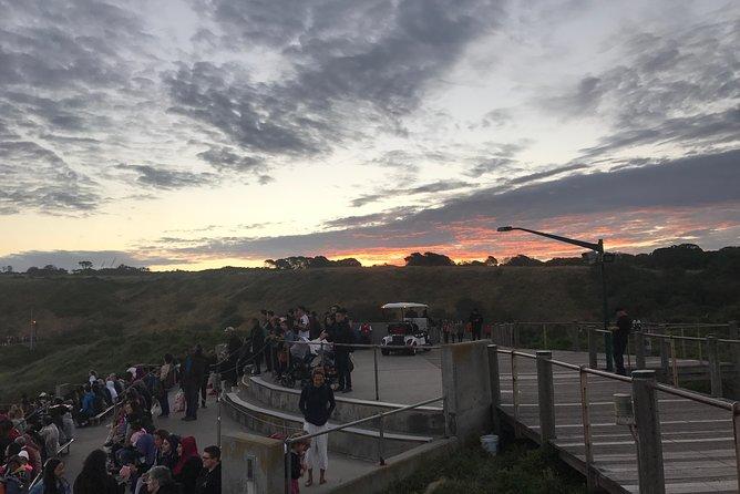 Phillip island & Penguin Parade