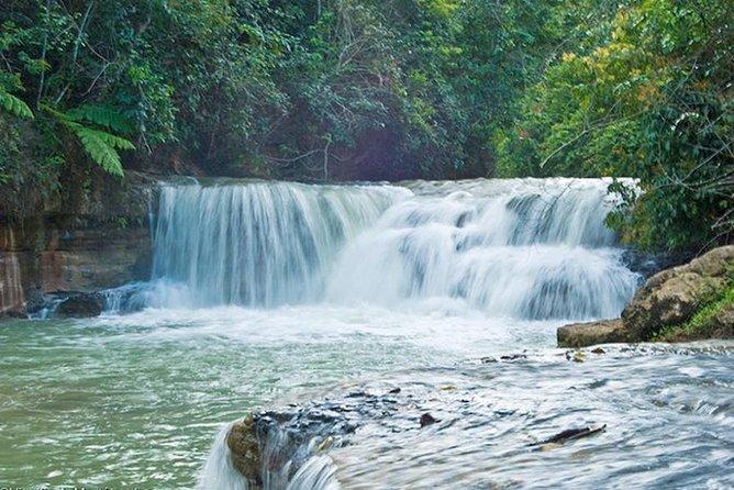 Punta Cana Ecological Tour to Los Haitises National Park