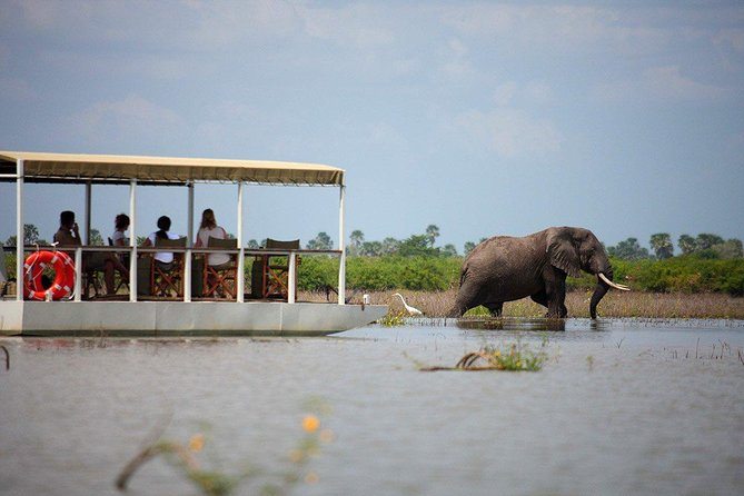 A Day Trip To Selous Fly From Zanzibar