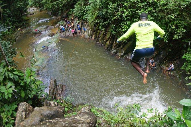 Aripo Waterfall Adventure