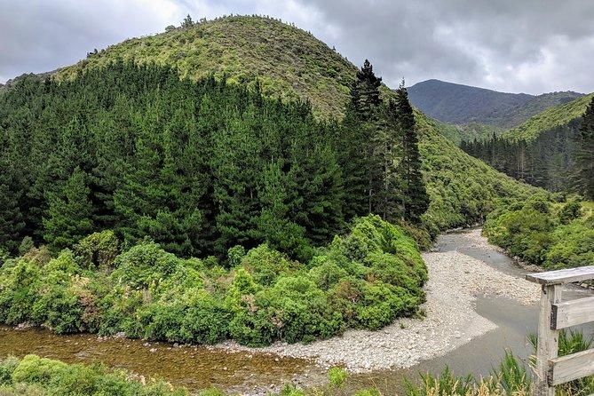 Remutaka Rail Trail & Martinborough Vineyard Explorer Cycle Tour