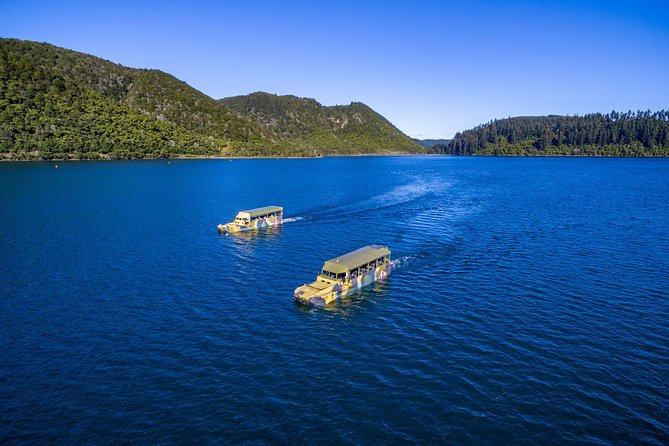 Tarawera and Rotorua Lakes Eco Tour by Boat with Guide