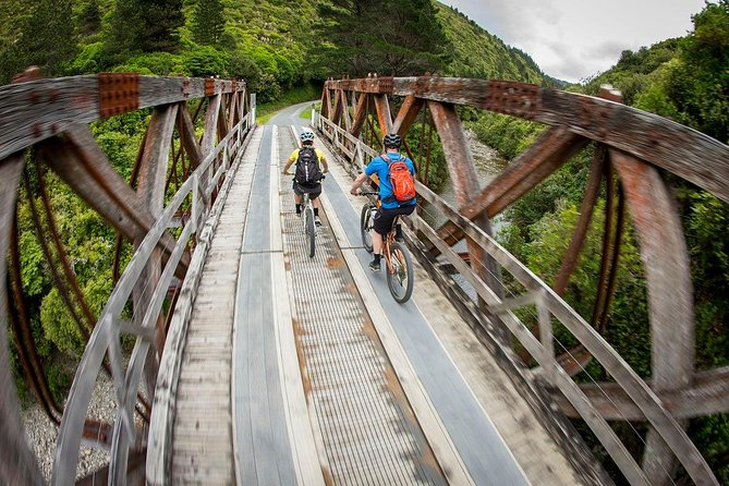 Remutaka Rail Trail Explorer - Cruise Ship Cycle Excursion