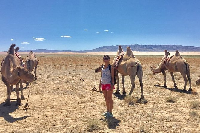 2D,1N Gobi desert and Old city Kharkhorum stay with Nomadic family photo 4