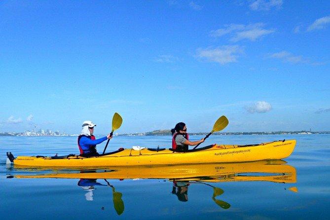 Half day kayak tour to Motukorea island